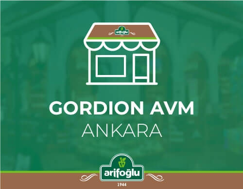Gordion AVM